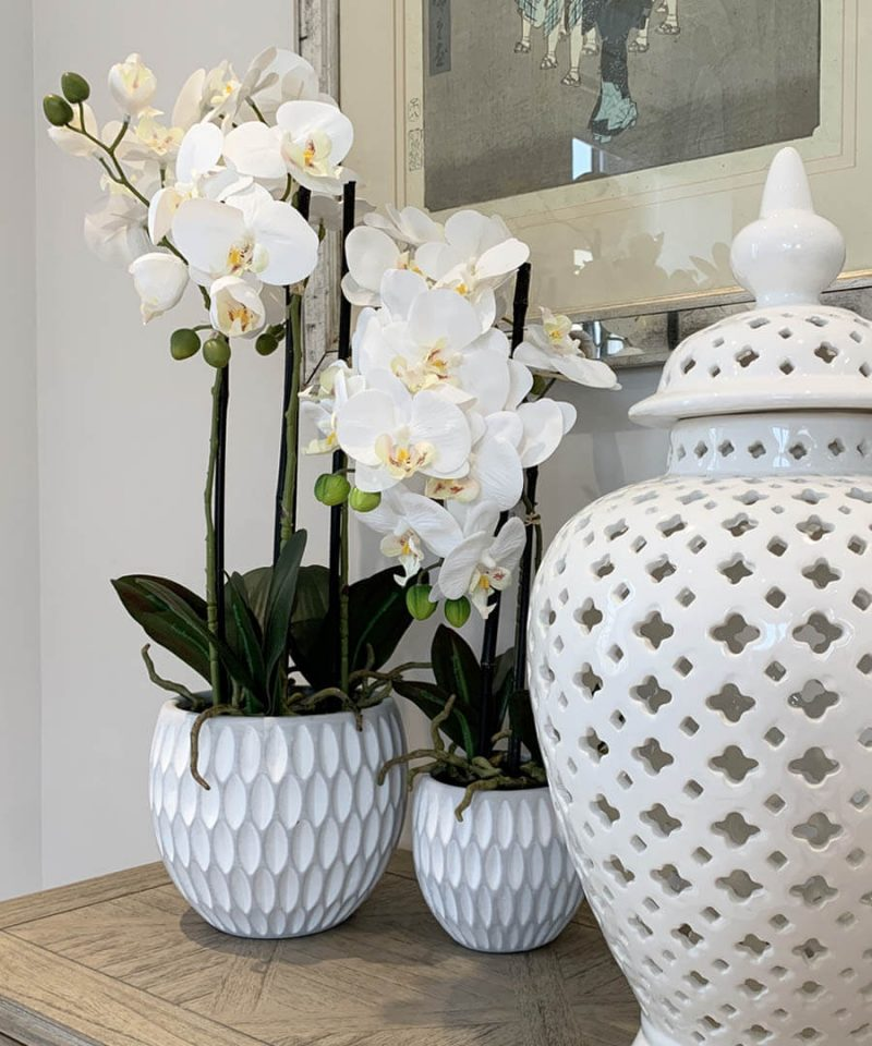 Our Best Selling Artificial White Orchid Plants & How To Style Them