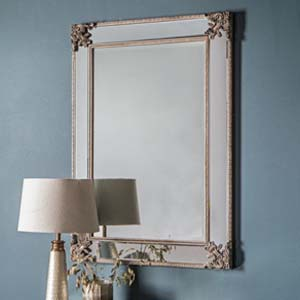 Pavilion Chic Jean Large Ornate Wall Mirror