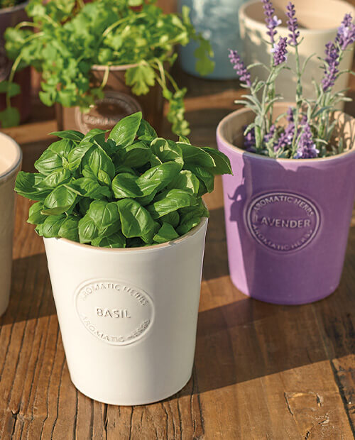 pros and cons of ceramic as a plant pot material