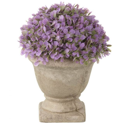 Parlane Hydrangea Potted Purple Height 18cm