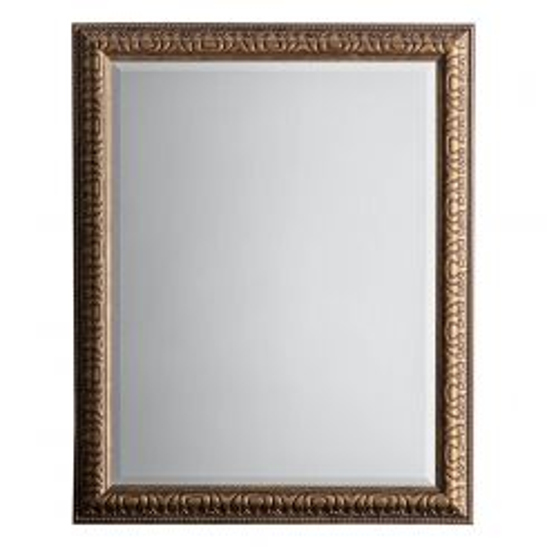Pavilion Chic Lily Bronze Rectangular Mirror