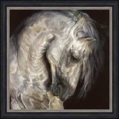 Pavilion Art Andalusian By Debbie Boon - Framed Print
