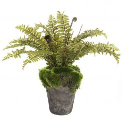 Pavilion Flowers Artificial Boston Fern Potted Green Height 30cm
