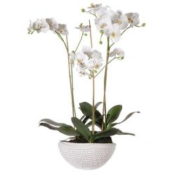Pavilion Flowers Artificial Orchid Phalaenopsis in Pot