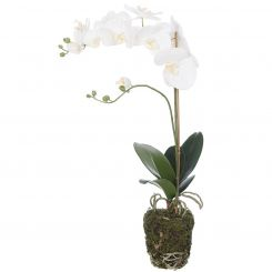 Pavilion Flowers Artificial Phalaenopsis in Soil White Height 58cm
