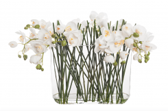 Pavilion Flowers Artificial Phalaenopsis Orchid In Glass Vase White Height 44cm