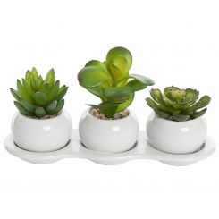 Pavilion Flowers Artificial Succulents in ceramic tray Height 12cm