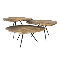 Eichholtz Coffee Table Quercus Brass Wood Effect Set of 3