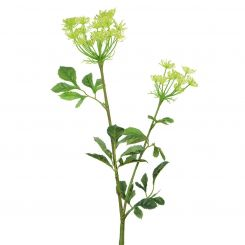 Pavilion Flowers Artificial Bishops Flower Green Height 75cm