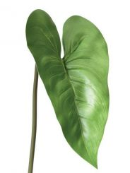 Pavilion Flowers Artificial Calla Lily Leaf Height 77cm