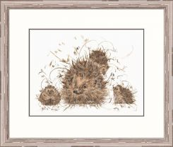 Pavilion Art Hedgie & The Hoglets by Aaminah Snowdon - Limited Edition Framed Print