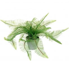 Parlane Feathered Fern Potted Green H.40cm