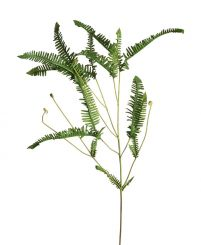 Parlane Fern Spray Height 81cm