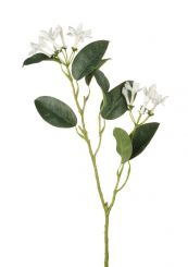 Parlane Stephanotis Spray White Height 53cm