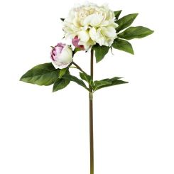 Parlane Peony Stem Real Touch H.56cm