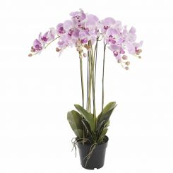Pavilion Flowers Artificial Phalaenopsis Orchid Potted Pink Height 92cm