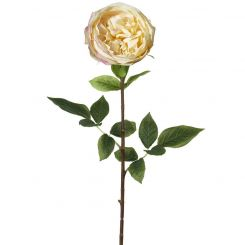Parlane Rose Stem Lora Real Touch H.71cm