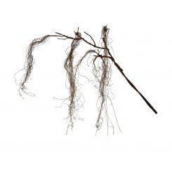 SIA Brown Artificial Twig Branch Height 140cm