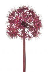 SIA FuchArtificial Large Stem Allium Height 94cm