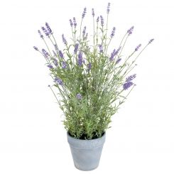 SIA Lavender Pot Purple Height 70cm