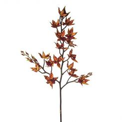 SIA Orange & Brown Artificial Wild Cymbidium Orchid Height 94cm