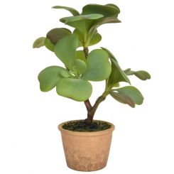 Pavilion Flowers Artificial Succulent in Clay Pot Green Height 35cm