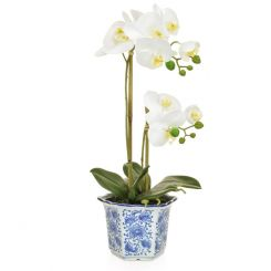 Pavilion Flowers Artificial Phalaenopsis White In Blue/White China Pot Height 47cm
