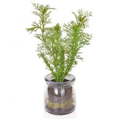 Pavilion Flowers Artificial Dill in Glass Jar Green Height 22cm