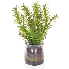 Pavilion Flowers Artificial Rosemary in Glass Jar Green Height 21cm