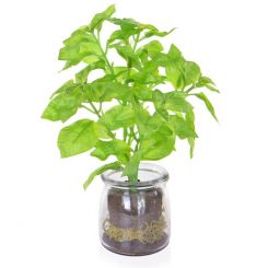 Pavilion Flowers Artificial Basil in Glass Jar Green Height 24cm