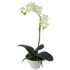 Pavilion Flowers Artificial Phalaenopsis In White Pot White Height 37cm