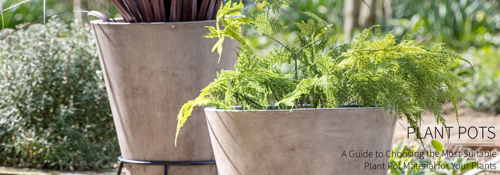 Choosing the Best Material for Your Plant Pots & Styles to Try in Your Home