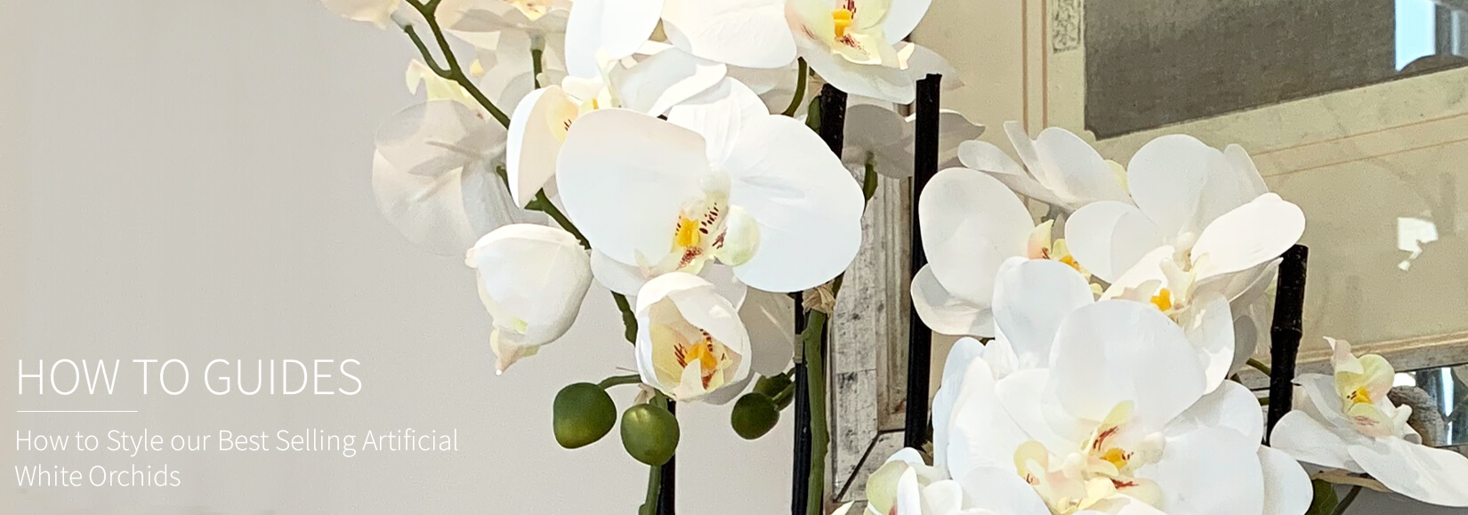 Our Best Selling Artificial White Orchid Plants And How To Style Them